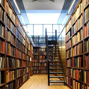 Библиотеки Тамбова